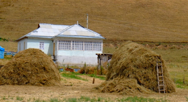 Kygryz-style house
