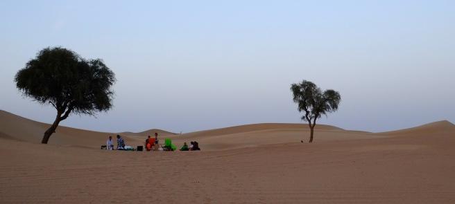 Desert barbecue