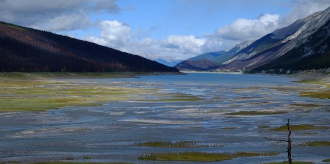 Maligne Lake...